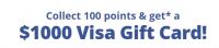 Оффер Visa $1000 Summer с оплатой за Регистрация
